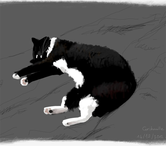 cat Speedpaint gribouille